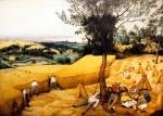 BruegelCorn_Harvest